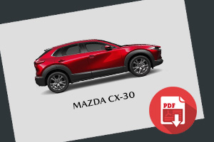 https://www.mazdadealers.co.nz/i/images/cx30/TN_FeaturesMazdaCX30_2.jpg